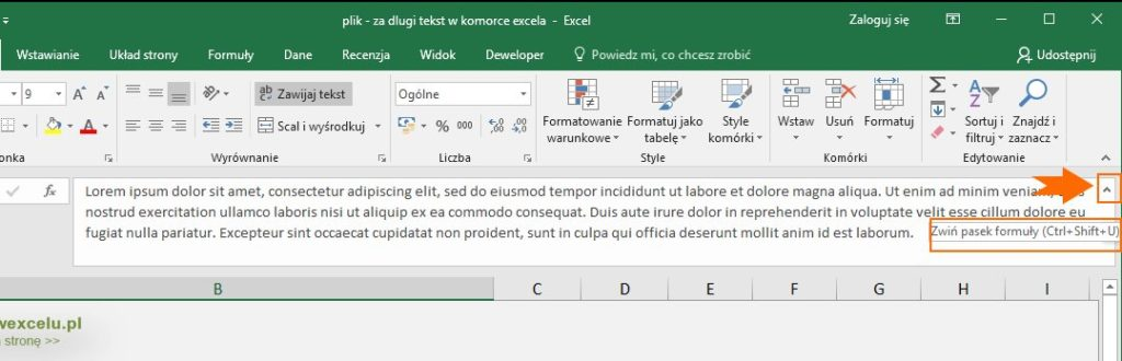 Długi tekst w komórce Excel - pasek formuły